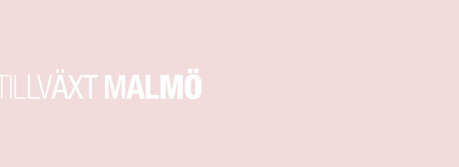 namnlo-st-3_rityta-1