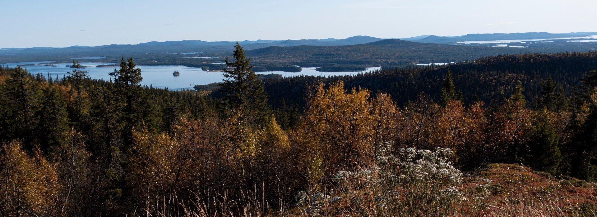 landscape-in-the-north-of-sweden-kghkdz6-2